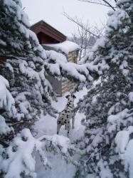 ich und der schnee